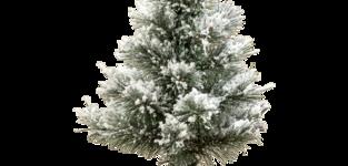 Minikerstboom Tromso 35cm