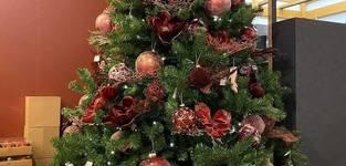 Kerstbal rood velvet 3 stks - 8cm